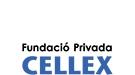 Web proyecto cellex